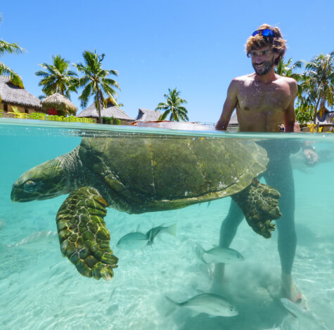 man in ocean with turtle